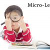 The Rise of the Microlearning Solution