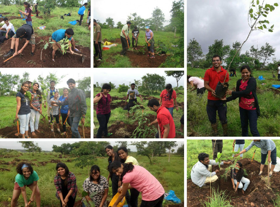 CSR Activity - tree plantation